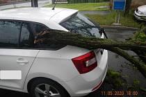 Následkem silného pondělního větru spadl na zaparkované auto v Českých Budějovicích strom.