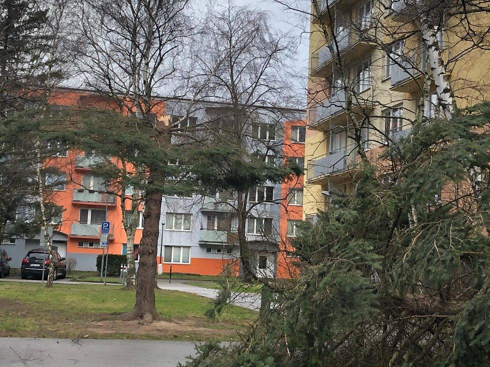 Vítr v pondělí zlomil strom mezi paneláky na Pražském předměstí.
