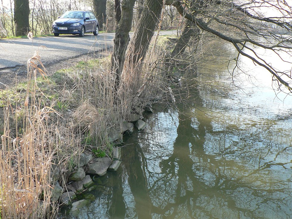 Starohaklovský rybník.