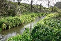 Potok Kyselá voda protéká několika obcemi na severovýchodě Českobudějovické pánve.