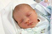 Čtyřletému Daníkovi se narodila sestřička Sofie Matušková. Přišla na svět 29. listopadu 2017 v 10.01 hodin a vážila 2600 gramů. S rodiči Nikolou Freyovou a Danielem Matuškou i bráškou bude vyrůstat v Lišově.