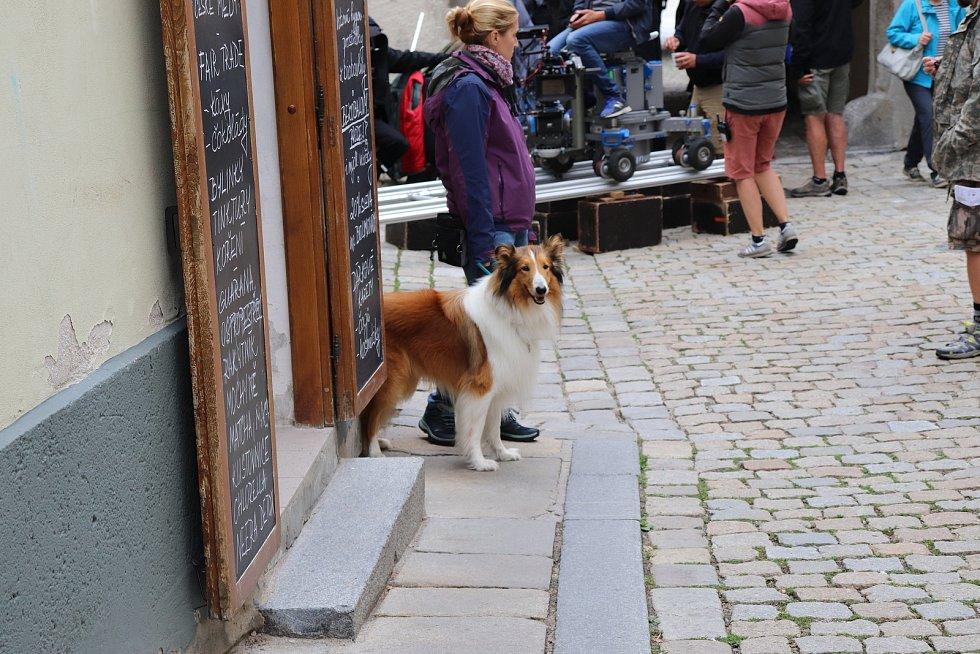 Lassie, vrať se. Snímek pro celou rodinu pořizovali němečtí filmaři na Prachaticku. Klapka padla v okresním městě, ve Vlachově Březí nebo Anníně.