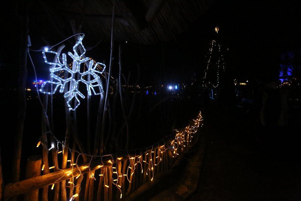 Zoologická zahrada na Hluboké se i letos oblékla do vánočního hávu.