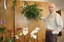 Karel Willinger má tisíce orchidejí, dokonce objevil i úplně nový druh.