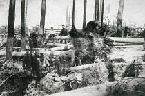 Polomy způsobené větrnou smrští v roce 1916 u Borku.