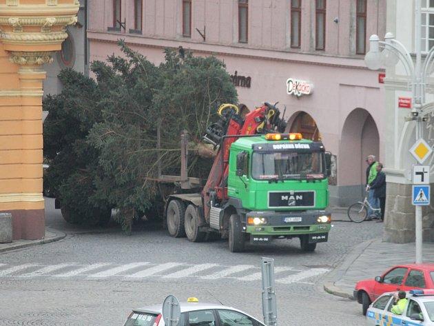 Vánoční strom už stojí na svém obvyklém místě na náměstí.