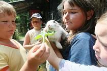 V bývalém kamenolomu poblíž Rudolfova u Liberce se v minulosti konal například dětský letní tábor (na snímku). Dnes pořádá akce pro děti v Rudolfově místní spolek.