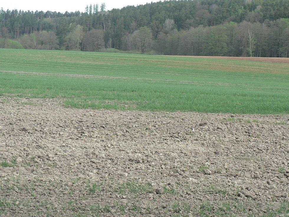 Zemědělce na polích letos znovu trápí sucho. Snímek je z okolí Čakova na Českobudějovicku.