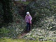V Den památek v Českých Budějovicích meli návštěvníci jedinečnou možnost nahlédnout do jindy uzavřené Biskupské zahrady, která nabízí i výhled na soutok řek Malše a Vltavy.