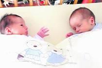 Eliška a Filípek se narodili 30. listopadu 2010 Aničce a Filipovi Mičanovým ze Spolí. Na svět přišli v 8.13 a 8.14 h, vážili 2,68 a 2,79 kilogramů.