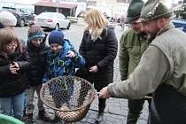 Prodej ryb na českobudějovickém náměstí.