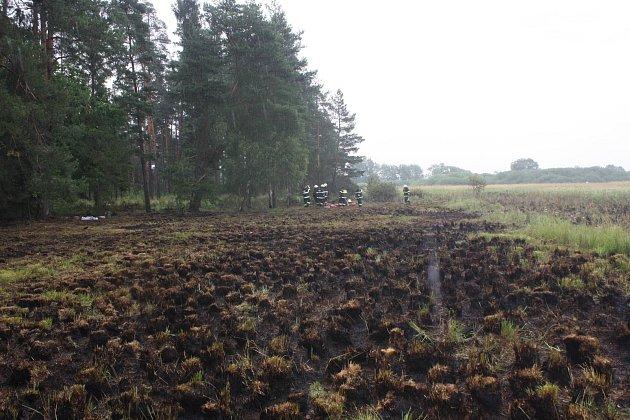 Hasičům dal zabrat sobotní požár louky a lesa u Jílovic.