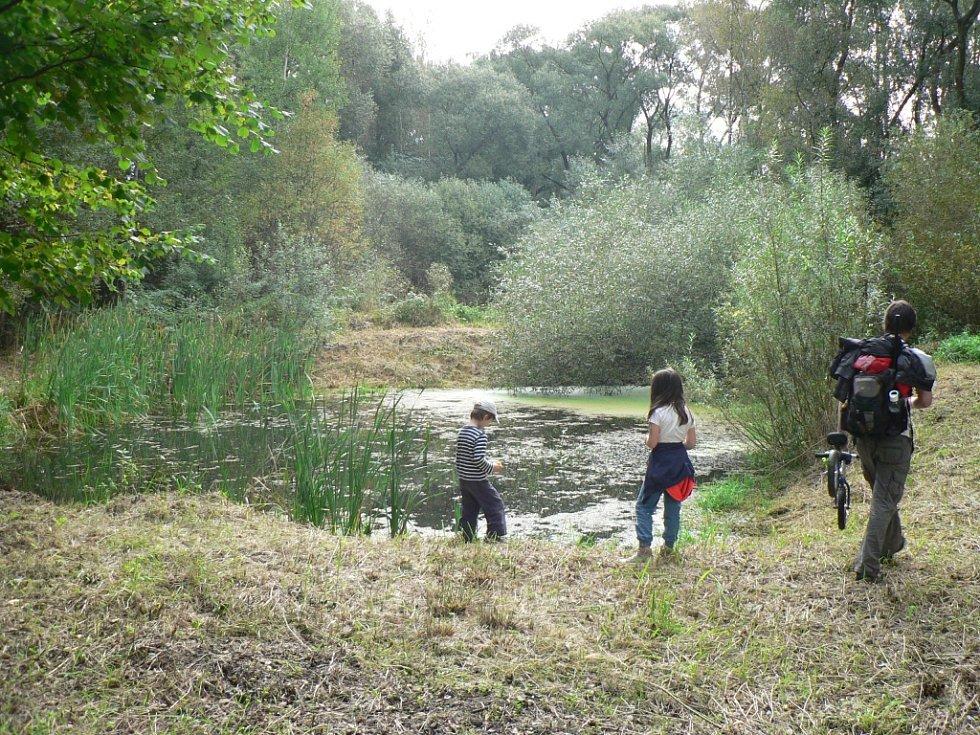 Tůně U Špačků na okraji Budějovic se staly cílem vycházky pořádané ekology.