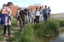 Zajímavé druhy rostlin i živočichů se objevují na nové zahradě přírodovědecké fakulty.