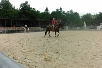 Hobby 2015, v programu výstavy je i rodeo show