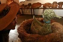 Městské muzeum ve Volyni připravilo výstavu s názvem Sláma, která podrobně vypovídá o využití slámy v rukodělné výrobě a tvorbě českého venkova i města. Expozice s vůní čerstvě naplněného seníku potrvá do 8. října.