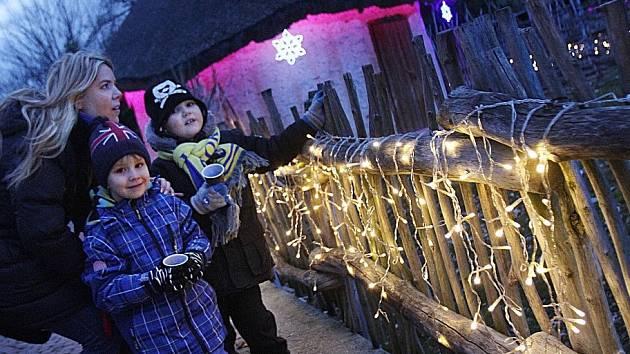 Svátečně nasvícená zoo láká v těchto dnech do Hluboké nad Vltavou stovky lidí.