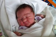 Budějovičtí partneři Adéla Holceplová a Vojtěch Vlk jsou šťastnými rodiči Sofie Vlkové. Ta se narodila  9. 2. 2017 ve  22.43 h, vážila 4,05 kg. Má jedenáctiletou sestřičku Simonu.
