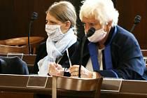V Českých Budějovicích začal soud se ženou obviněnou z vraždy syna.