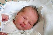 Nikol Trávníčková je maminkou novorozené Viktorie Vaněčkové. Na svět přišla 16. 1. 2019 ve 12.08 h. Její porodní váha byla 3,20 kg. Žít bude v Českých Budějovicích.