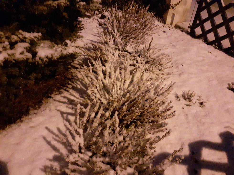 Jihočeši se v pátek probudili do bílého rána. Snímek je z Lišova.