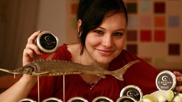 Vodňanská Fakulta rybářství a ochrany vod Jihočeské univerzity získala jako první v Česku licenci na výrobu pravého kaviáru. Jikry získává ze živého jesetera.