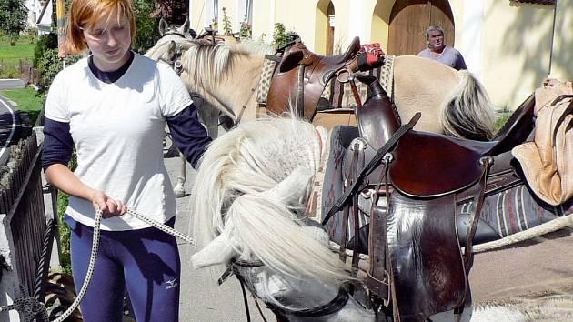 Na snímku Zuzana Hloušková při uvazování koní.
