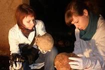 Eva Brázdová (vlevo) a Nikola Hrubá zkoumají ostatky lidí, pohřbených v katedrále.