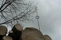 Nová polena už jsou často připravena před pálením čarodějnic ještě u starých stojících májek. Na snímku náves v Jankově.