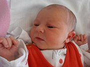 Město Týn nad Vltavou bude jistě krásným domovem pro holčičku jménem Karolína Tománková. Narodila se 24.4.2012 v 9 hodin a 24 minut. Po narození vážila 3,28 kg a šťastnými rodiči jsou Antonín Tománek a Veronika Mészárosová.