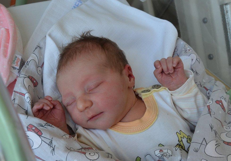 Petra Horová a Petr Oberfalcer přivítali 9. 6. 2021 v 10.13 h. na světě svou prvorozenou dceru Nelu Oberfalcerovou. Její porodní váha byla 3,80 kg. Žít bude v Písku.