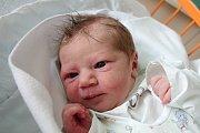 Třetí přírůstek do rodiny přivítala 7. 11. 2018 na světě Vladimíra Prášková. V tento den ve 4.05 h. porodila Anetu Práškovou. Vážila 3,05 kg. Doma bude v jihočeské metropoli.