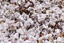 Plastové a jiné nevratní kelímky jsou velkou zátěží pro životní prostředí.