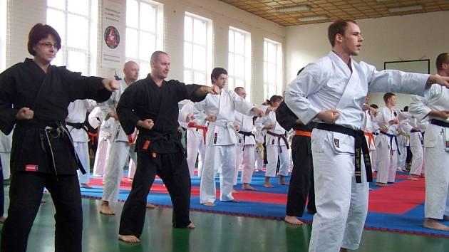 Snímek ukazuje, jak to vypadá, když se hala na Sportovním klubu policie v Českých Budějovicích až do posledního metru čtverečního zaplní příznivci japonského bojového umění s názvem Allkampf – Jitsu.
