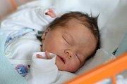 Dobčice jsou domovem novorozeného Jaromíra Bícy. Maminka Alena Bícová jej přivedla na svět 22. 10. 2018 v 9.02 h. Váha po porodu ukazovala 3,29 kg. Foto: Ilona Lonsmínová