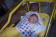 Milan Dvořák je z Týna nad Vltavou. Prvorozený syn Petry Gregové a Milana Dvořáka se narodil 24. 12. 2018 v 9.01 hodin. Při narození vážil 4,10 kg a měřil 53 cm.