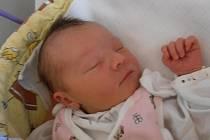 Slováčkovi se radují z nového přírůstku do rodiny – dcerky Lucie Slováčkové. Holčička s porodní váhou 2,97 kg poprvé pohlédla na tento svět v úterý 29.5.2012 v 5 hodin a 12 minut. Dětství bude prožívat v Českých Budějovicích.