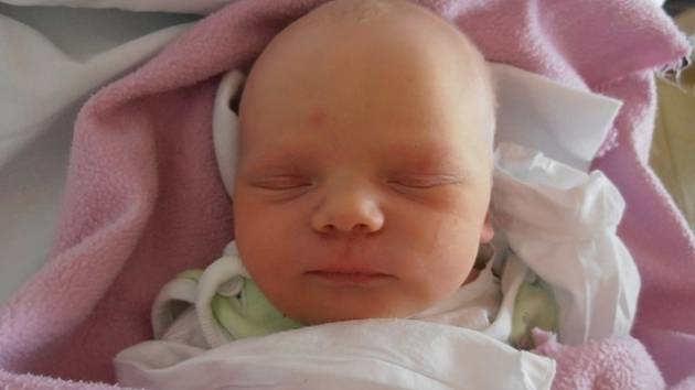 V pondělí 17.2.2014 mohl poprvé stisknout v náručí svou prvorozenou dceru Sofii Nenadálovou pyšný tatínek Jan Nenadál. 3,20 kg vážící Sofinka vykoukla na svět přesně 18 minut po 18. hodině. Vyrůstat bude v  Bavorovicích.