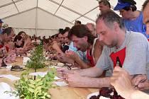 Dva tisíce knedlíků s borůvkovou omáčkou se vloni snědlo při Borůvkobraní v Borovanech. Důležitým bodem programu akce je vždy soutěž v pojídání knedlíků (na snímku jeden z minulých ročníků). Co nesní soutěžící, o to se postarají ostatní návštěvníci.