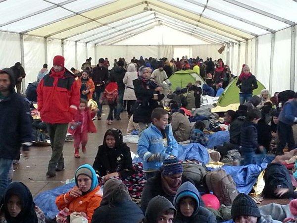 Velkostan pomohl uprchlíkům vKollerschlagu.
