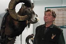 Mezi nejlepší exponáty na výstavě Země živitelka vybrala porota i loveckou trofej muflona, kterého na Náchodsku ulovil Petr Žuček. Trofej je k vidění v pavilonu F4.