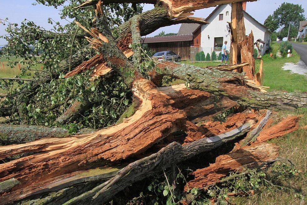 Malé tornádo se prohnalo v pondělí odpoledne Těšínovem u Petříkova. Vichřice vyvrátila asi 20 stromů a poničila i dětské hřiště a střechy několika domů.