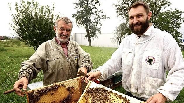 Včely, jejich vášeň...