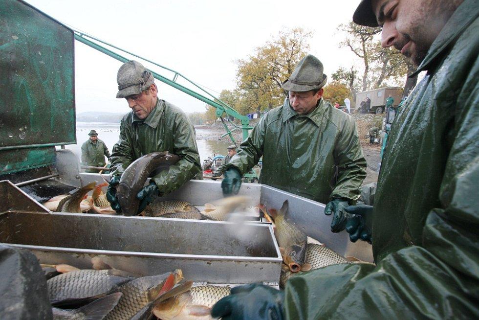 Rybářské slavnosti 28. 10. 2014 v Hluboké nad Vltavou.