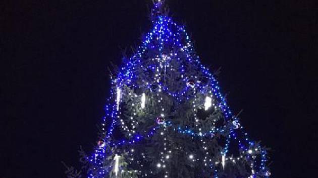 V Boršově nad Vltavou rozsvítili v neděli 1. prosince vánoční stromek.