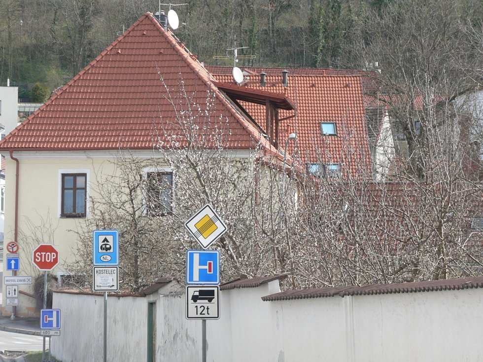 Jarní květy v Hluboké nad Vltavou.