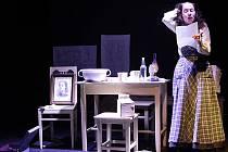 Jaroslava Červenková v monodramatu Osamělé večery Dory N., které uvádí Jihočeské divadlo. Hraje dceru spisovatelky Boženy Němcové.