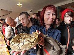 První letošní terarijní výstava a burza se uskutečnila v neděli v Budějovicích. Přilákala stovky lidí. Velkou pozornost budili hadi, agamy, chameleoni a další zvířata.