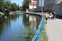 Město odstranilo zábradlí u Malše vedle horní části biskupské zahrady. -0115cb19