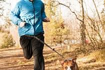 Michal VirtPRVNÍ ZÁVOD. Lukáš Doležal se spolu se svým miláčkem Roxym, americkým stafordširským teriérem, chystá na první jejich závod v canicrossu, který se uskuteční 12. dubna u Veselí nad Lužnicí.